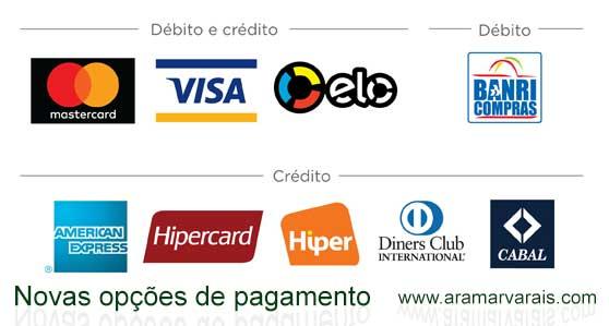 bandeira-pag-seguro-logo-site